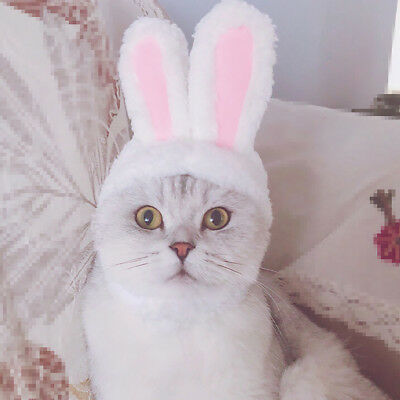 Dog Pet Bunny Rabbit Ears Hat For Cat Small Puppy Kitten Party Costume Outfit HN