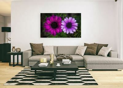 colorful nature trees beautiful-flower pink  ART Framed Canvas  choose your size