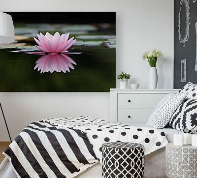 nature-flower-plant-flowers- pink  ART Framed Canvas  choose your size
