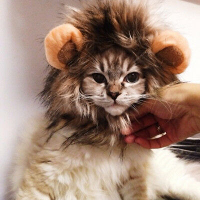 Pet Dog Hat Costume Lion Mane Wig For Cat Halloween Dress Up With Ears 2019 MLF
