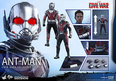 MARVEL Ant-Man Action Figure 30cm 1/6 Movie Civil War MMS362 Hot Toys Sideshow