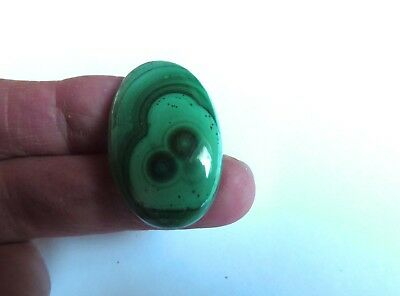 Malachit - Malachite Cabochon 34x21,7 mm 55 ct. U20873