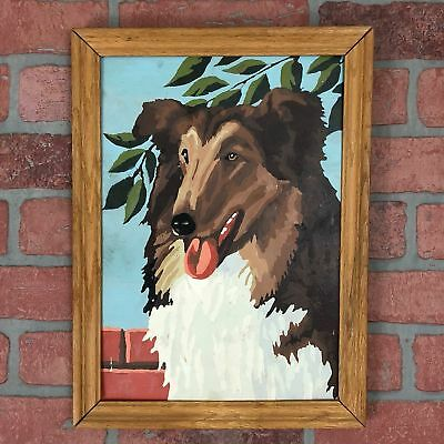 60's Framed Paint By Number Dog Hand Painted