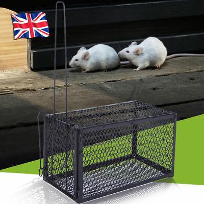 2x Metal Rat Catcher Spring Humane Large Cage Mouse Trap Animal Rodent UK