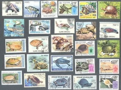 Turtles & Tortoises - 25 all different stamps collection