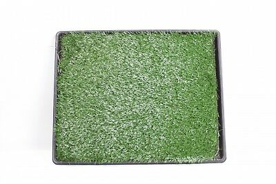 "Artificial Grass Bathroom Mat for Puppies Small Pets- 20"" x 25"""