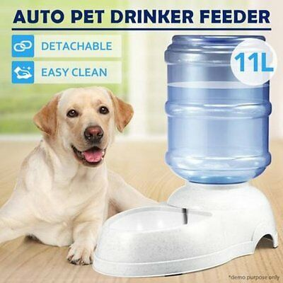 NEW 11L Automatic Pet Dog Waterer Automatic Water Dispenser Drinking Feeder