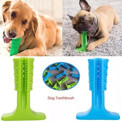 Pet Dog Toothbrush Brushing Stick Teeth Cleaning Chew Toy Brush Oralcare S/M/L