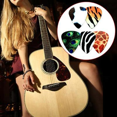 5PCS Animal world Guitar Picks Music Accessories Acoustic Electric Bass Picks