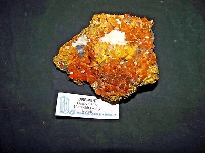 Beautiful Orpiment Natural Mineral Specimen Getchell Mine Humboldt County Nevada