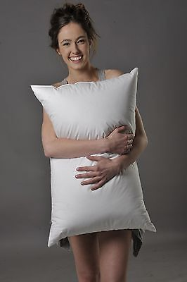 Standard Size Pillow 95% Hungarian Mother Goose Down Better Than Hotel Quality