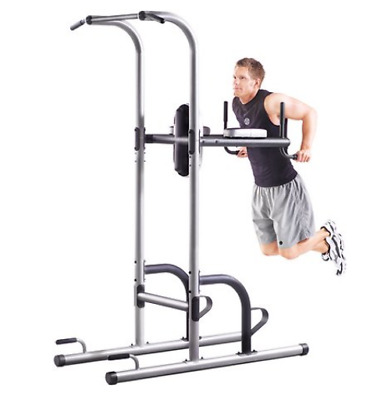 Dip Pull Up Station Tower Golds Gym Exercise Fitness Strength Training Gray New