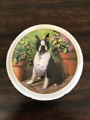 "Boston Terriers Collector Plate ""All Ears"" by Dan Hatala - The Danbury Mint"