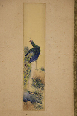 "JAPANESE HANGING SCROLL ART Painting Tanzaku ""Peacock""  #E5616"