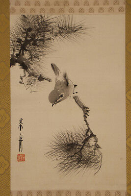"""JAPANESE HANGING SCROLL ART Painting """"Sparrow on Pinetree"""" Asian antique  #E5635"""
