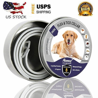 63cm Dewel Flea and Tick Collar Adjustable for Small Medium Large Dog 8 Month US