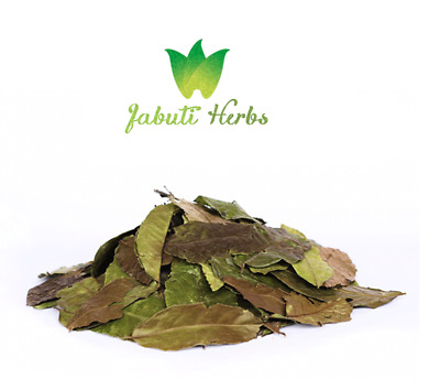 Guayusa tea – dried whole leaves, sustainable harvested in the Amazon