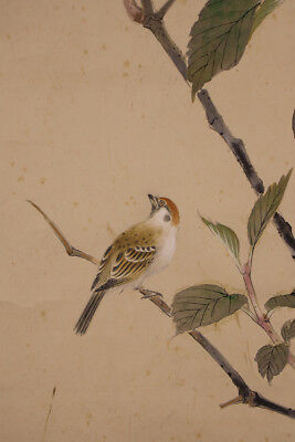 """JAPANESE HANGING SCROLL ART Painting """"Bird and Flower"""" Asian antique  #E5656"""