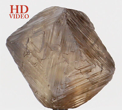 Natural Loose Diamond Brown Color Crystal Rough I1 Clarity 1.42 Ct KR1306