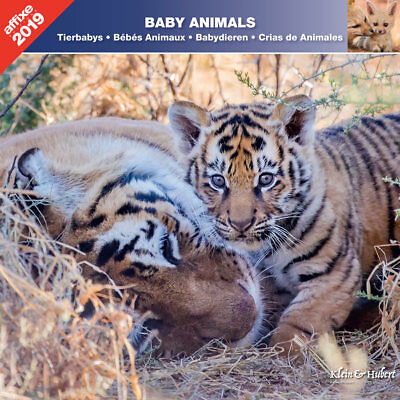 Calendrier 2019 Bebes Animaux  - Affixe
