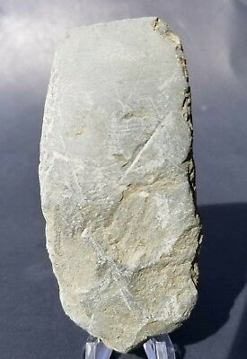 VF Indiana Slate Celt Chisel IN Stone Axe Indian Artifact Arrowhead Arrowheads