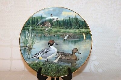 "Knowles PINTAIL Ducks Jerners 1986 1st Issue Living With Nature 8 1/2"" Plate"