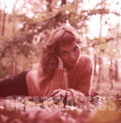 Elsa Martinelli 1957 Young Gorgeous Model 2 1/4 Camera Transparency Peter Basch