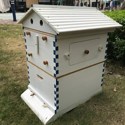 White Flow Bee Hive 7pcs Auto Honey Langstroth Wooden Beehive Bees Home Garden