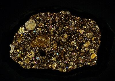Meteorite transparent polished thin section Coya Sur 004 (LL3, S1, W4) Chile