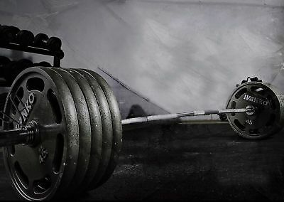 Z1666 SPORT WEIGHTLIFTING GYM FITNESS WEIGHTS Hot Silk Poster 36x24