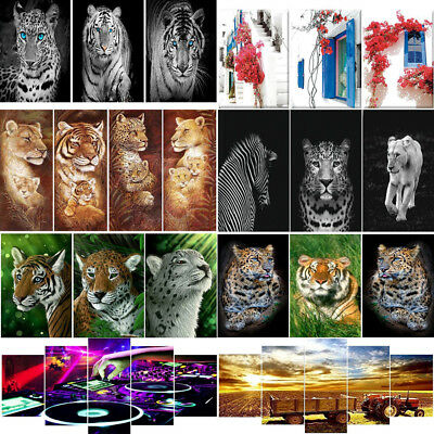 5pcs/kit 5D DIY Full Drill Square Diamond Painting Cross Stitch Embroidery Gifts
