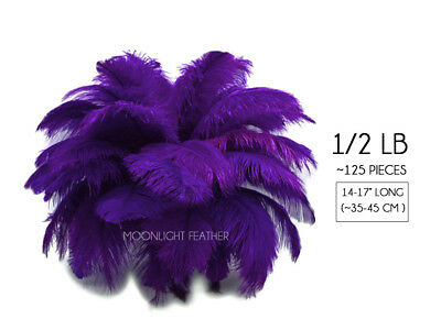 """125 Feather 14-17"""" Purple Ostrich Large Drab Wholesale Feathers Supplier Costume"""
