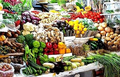 Non Gmo Heirloom Vegetable Seed You Choose Over 30 Varieties Grow Your Own Food!