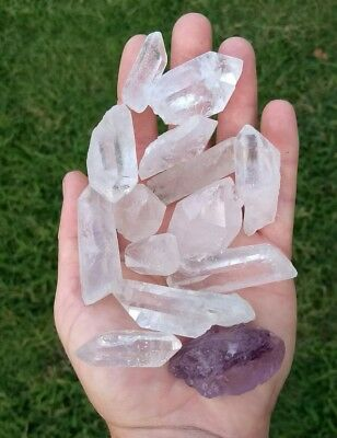 GemFarmer CQP: 1/2 LB Lot Large Clear Quartz Points Rough Crystals Crown Chakra