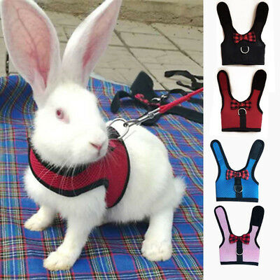 Pet Soft Mesh Harness With Leash Small Animal Vest Lead for Hamster Rabbit Bunny