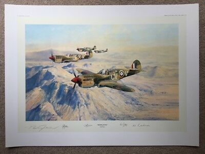 Robert Taylor DESERT HAWKS Kittyhawk P-40 Aviation Art Print NO RESERVE $1 START