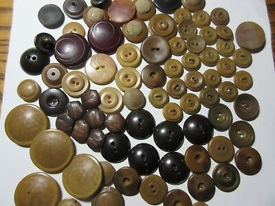 Vintage Lot Of Buttons Vegetable Ivory