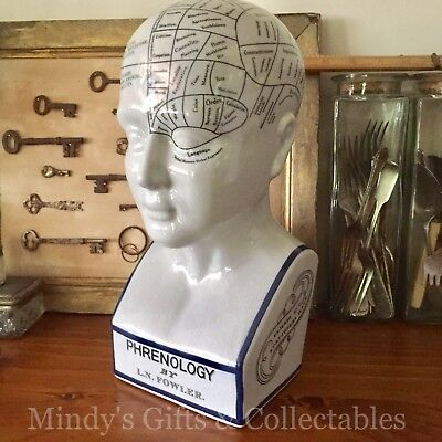 30cm Phrenology Head Medical Bust Scientific Skull Porcelain Ceramic