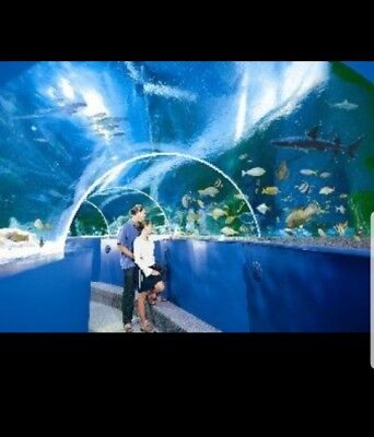 Sea life tickets Manchester x 4 for Saturday 16/02/19, 16 February 2019