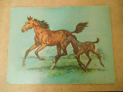 """vintage USA lithograph mare and colt  12"""" x 16"""""""