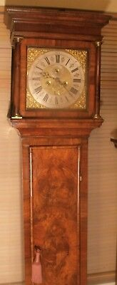 "Antique  Walnut  Brass Dial  "" Birmingham ""   Longcase / Grandfather Clock"