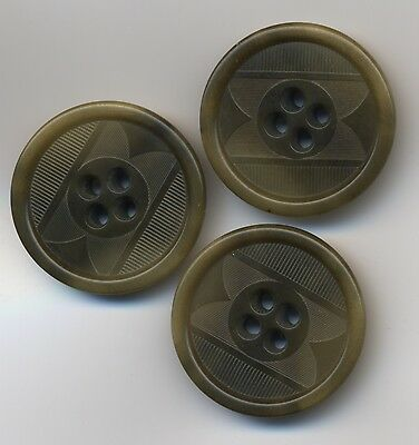 """3 Vintage Green embossed Vegetable Ivory Buttons 1"""" matching set, Antique"""