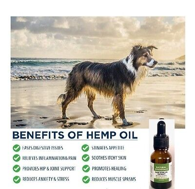 3 PACK Organic CBD Hemp Oil for Dogs/Cats Pets Stress Anxiety Pain Relief 450mg