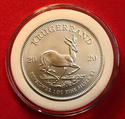 2019 South African Krugerrand .999 Silver Bu In Coin Capsule With Free Shipping