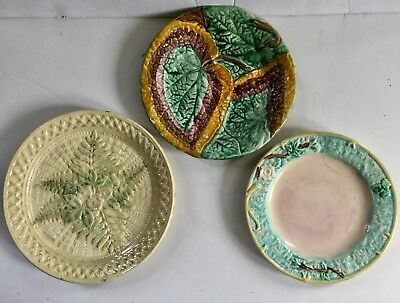 Antique Majolica Plate Lot Ferns Flowers & More