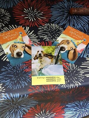 Set Of 3 Basset Hound Hallmark Birthday Cards Deal
