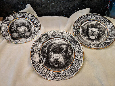 NCA National Specialty Dog Collectible Plates - Lot Of 3!