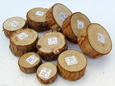 """Dept. 56 Wooden Tree Bases Set of 10  Various Sizes 0.5"""" to 1.5"""" Free Shipping"""