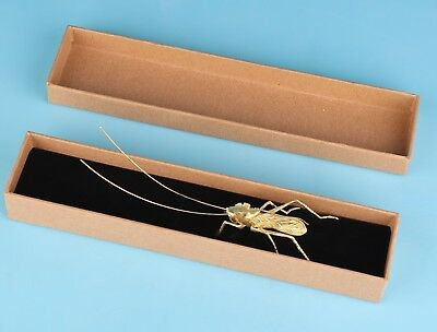 Vintage ChinA Gold-Plated Statues Handcrafted Gift Boxes Animal Grasshopper