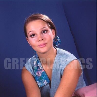 Leigh Taylor-Young 1966 Peyton Place 2 1/4 Camera Transparency Peter Basch